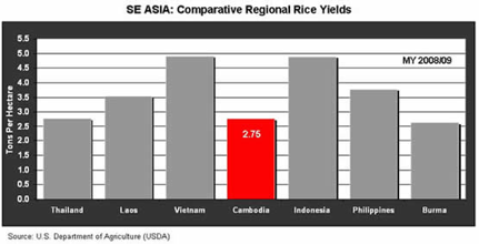 rice yields graph